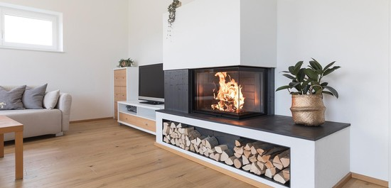 ECO VENUS fireplace